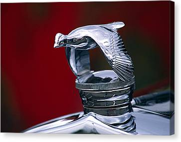 1931 Ford Quail Hood Ornament Canvas Print by Carol Leigh