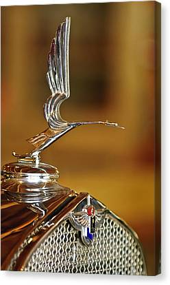 1931 Lasalle Hood Ornament Canvas Print by Jill Reger