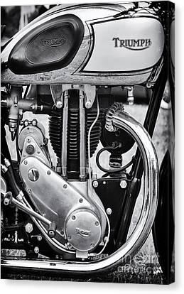 1936 Triumph Tiger 80 Monochrome Canvas Print by Tim Gainey