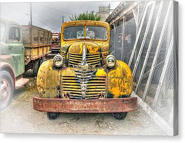 1946 Dodge Truck Canvas Print