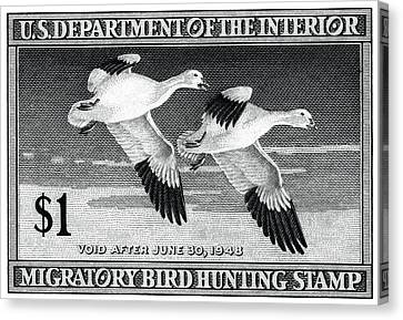 1947 American Bird Hunting Stamp Canvas Print by Historic Image
