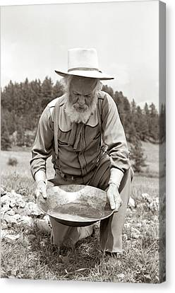 Old Grandfather Time Canvas Print - 1950s Male Prospector Panning For Gold by Vintage Images