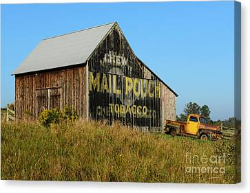1951 Ford Pick Up Truck At The Barn Canvas Print