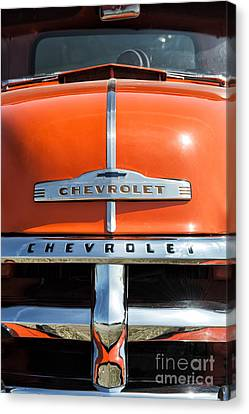 1954 Chevrolet 3100 Pickup Canvas Print by Tim Gainey