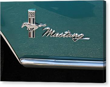 1960 Mustang  Canvas Print by Suzanne Gaff