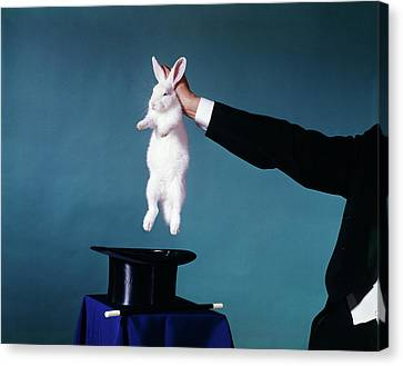 Black Top Canvas Print - 1960s Hand Of Magician Pulling White by Vintage Images