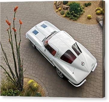 White Chevy Canvas Print - 1963 Chevrolet Corvette Split Window -440c by Jill Reger