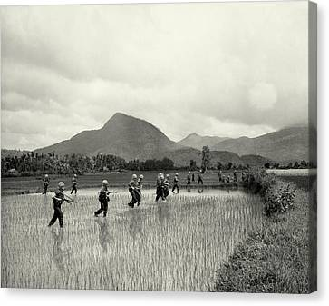 1965 1st Cavalry Division In Vietnam Canvas Print by Historic Image