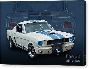 1966 Shelby Gt350 Canvas Print