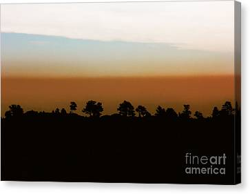 Canvas Print featuring the photograph 1974 by Dana DiPasquale