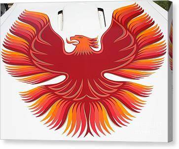 1979 Pontiac Firebird Emblem Canvas Print by John Telfer