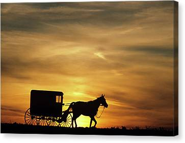 Amish Community Canvas Print - 1980s Amish Horse And Buggy Silhouetted by Vintage Images