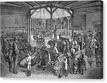 19th Century Dresden Milk Bar Canvas Print by Bildagentur-online/tschanz