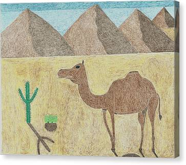 A Camel In The Desert Canvas Print