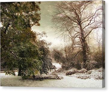 A Dusting Of Snow Canvas Print by Jessica Jenney
