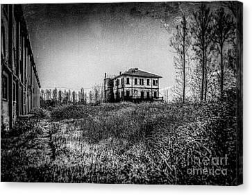 Abandoned Sugar Mill Canvas Print by Traven Milovich