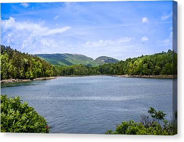 Canvas Print featuring the photograph Acadia National Park by Trace Kittrell