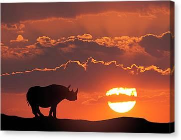 Africa, Kenya, Masai Mara Game Reserve Canvas Print by Jaynes Gallery