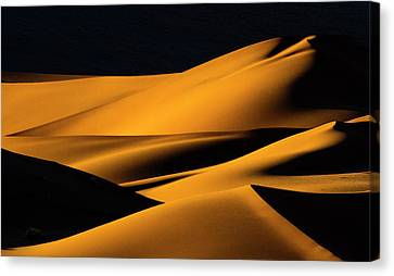 Africa, Namibia, Namib-naukluft Canvas Print by Jaynes Gallery