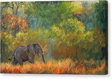 Elephants Canvas Print - African Elephant by David Stribbling
