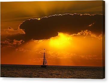 Canvas Print featuring the photograph After The Storm by Randy Pollard