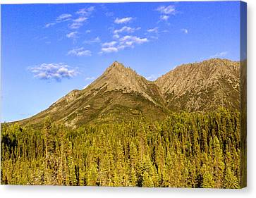 Alaska Canvas Print - Alaska Mountains by Chad Dutson