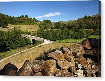 Ancient Romanic Bridge  Canvas Print by Carlos Caetano