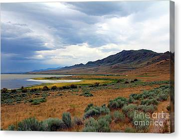 Canvas Print featuring the photograph Antelope Island by Jemmy Archer