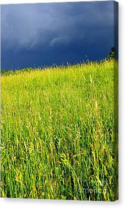 Approaching Storm Canvas Print by Thomas R Fletcher