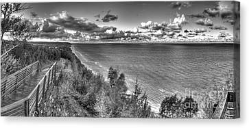 Arcadia Overlook In Black And White Canvas Print