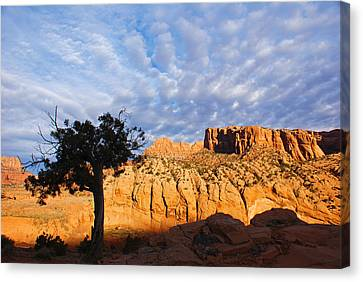 Arizona Red Rock Canvas Print