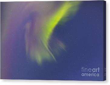 Aurora Borealis With Moonlight Canvas Print by Joseph Bradley