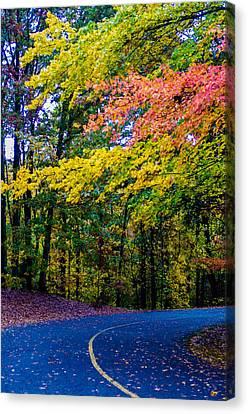 Lake Wylie Canvas Print - Autumn Country Road by Alex Grichenko
