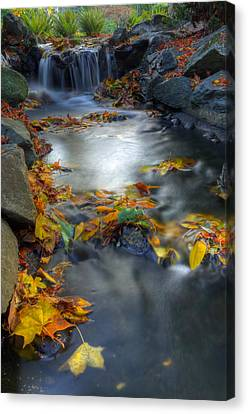 Autumn Creek Canvas Print by Matt Dobson