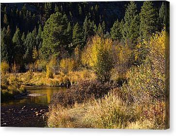 Autumn In The Rockies Canvas Print by Anne Rodkin