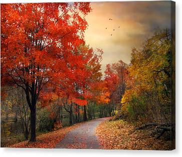 Canvas Print featuring the photograph Autumn Maples by Jessica Jenney