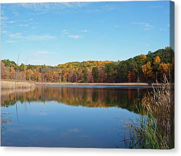 Canvas Print featuring the photograph Autumn Pond by Aimee L Maher Photography and Art Visit ALMGallerydotcom