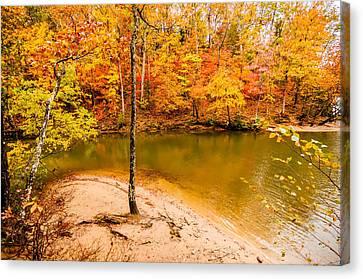Lake Wylie Canvas Print - Autumn Season At A Lake by Alex Grichenko