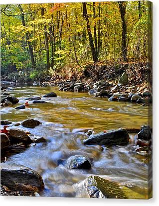 Eternal Flow Canvas Print - Autumn Stream by Frozen in Time Fine Art Photography