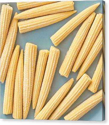 Babycorn Canvas Print
