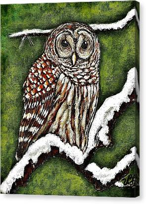 Canvas Print featuring the painting Barred Owl by VLee Watson