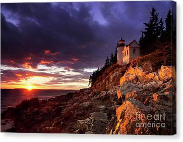 Bass Harbor Lighthouse Canvas Print by Brian Jannsen