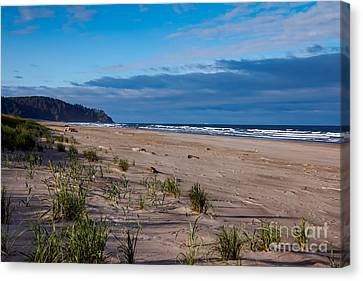 Beach View Canvas Print by Robert Bales