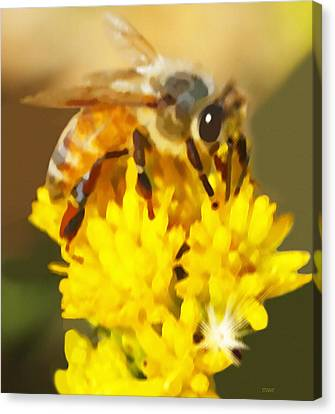Canvas Print featuring the painting Bee On A Yellow Flower by Marian Cates