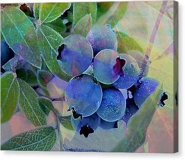 Berry Beautiful Canvas Print by Shirley Sirois