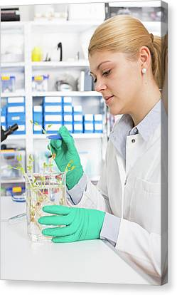 Biological Research Canvas Print