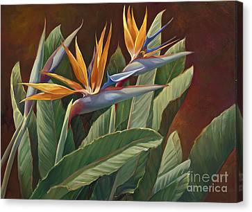 2 Birds Of Paradise Canvas Print by Laurie Hein