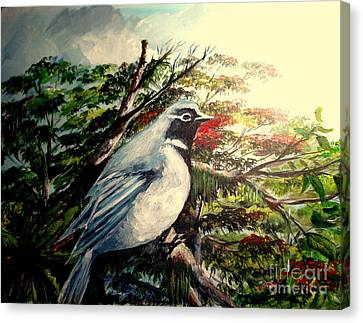 Canvas Print featuring the painting Black-throated Robin  by Jason Sentuf