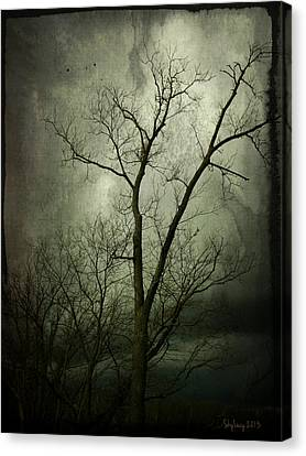 Canvas Print featuring the photograph Bleak by Cynthia Lassiter
