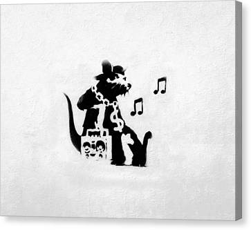 Bling Boombox Rat  Canvas Print by A Rey